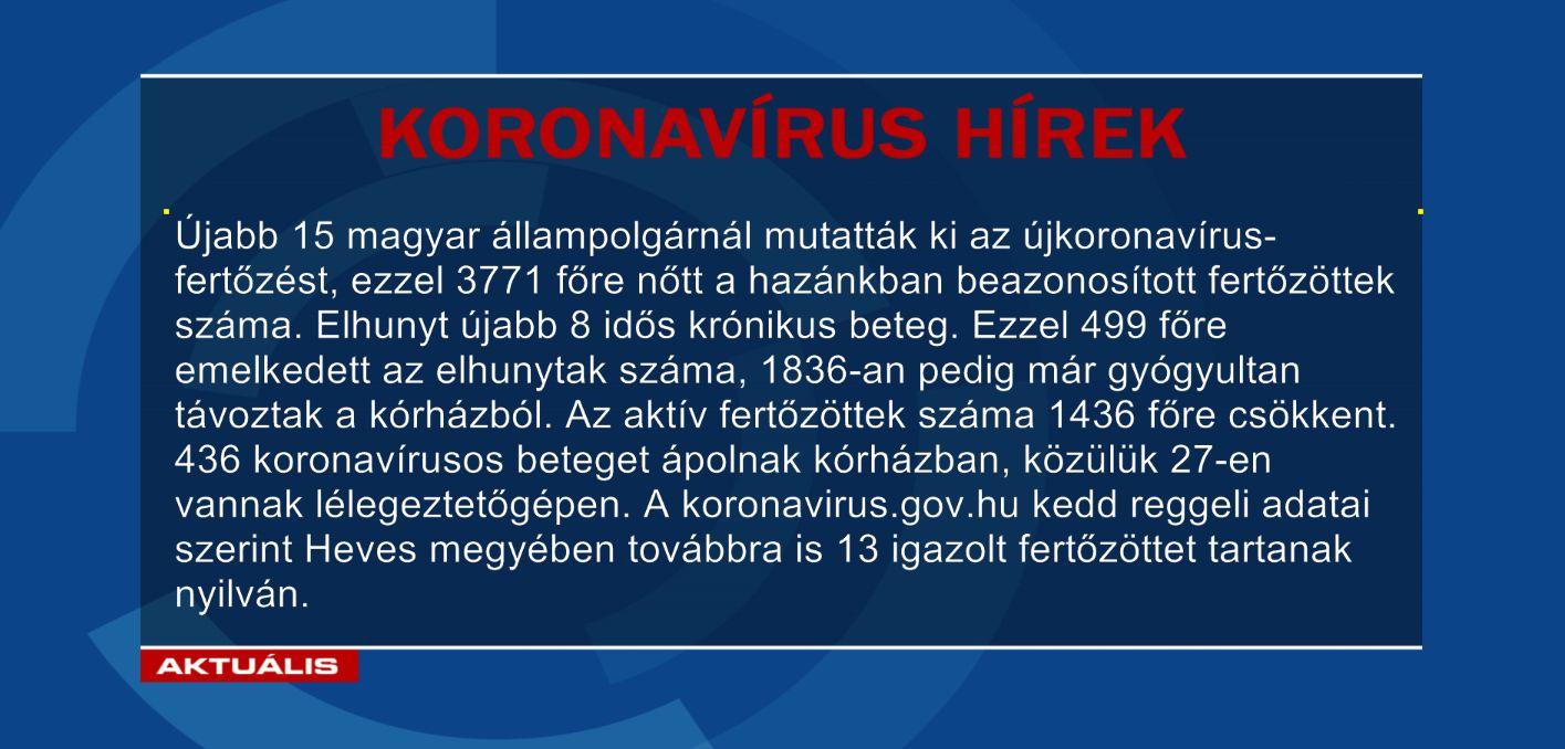 Koronaint05261