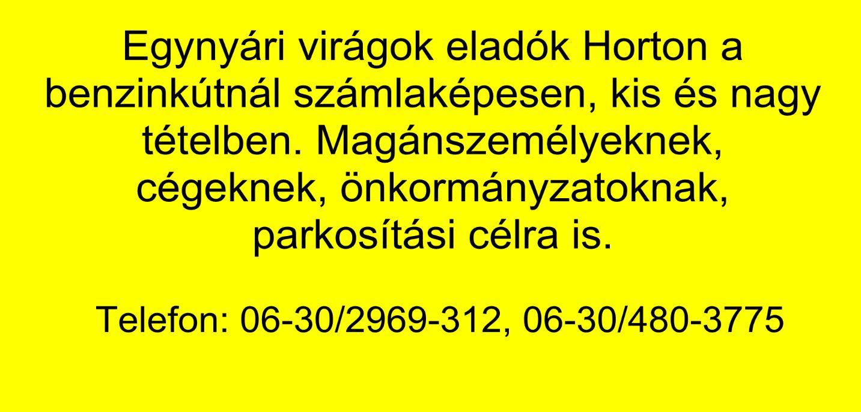 Egynyári0429